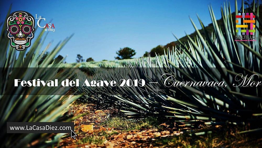Festival del Agave 2019, Cuernavaca Mor.