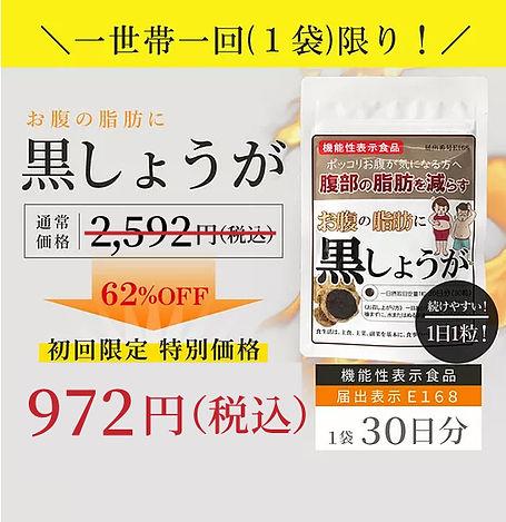 zei_pt972_10.jpg
