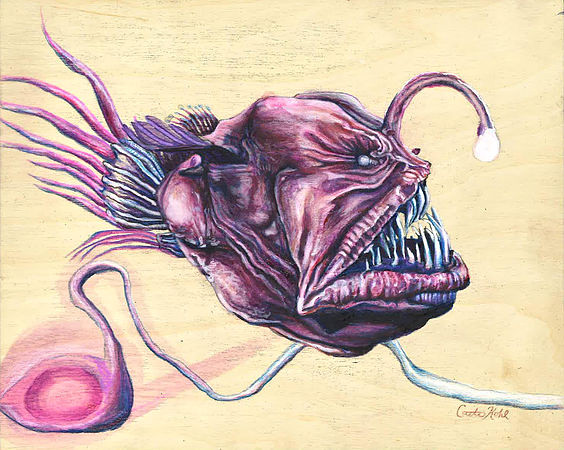 Caitie Kohl Anglerfish Study 2 7x10in color-pencil, watercolor, ink, gesso, and gel medium on panel 2019