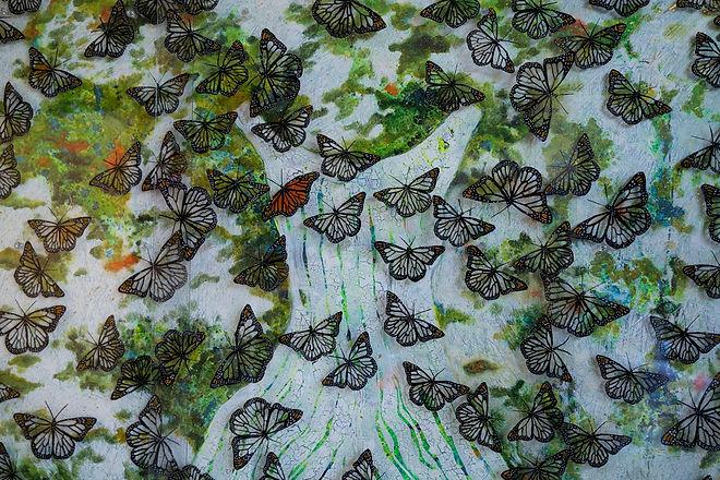 butterflieshorz-1.jpg