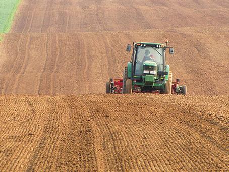 Soil Depth Requirement for Alfalfa