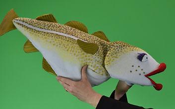 Kissin' Codfish.jpg