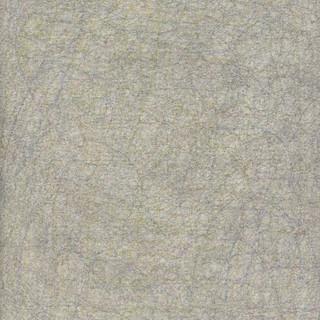 p29.jpg