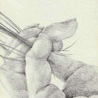 pencil on paper, 64x88mm, 2018.jpg