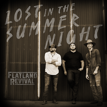 Lost In The Summer Night Cover.png