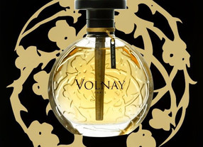 Revival of olfactory beauty - Parfums Volnay, France