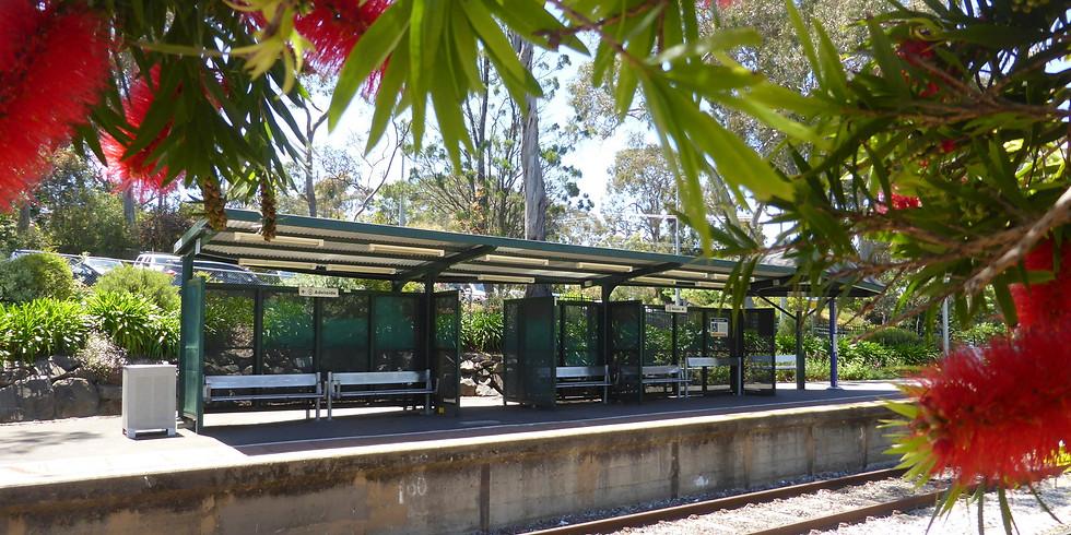 Coromandel Valley Station Working Bee