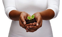 charity, environment, ecology, agricultu