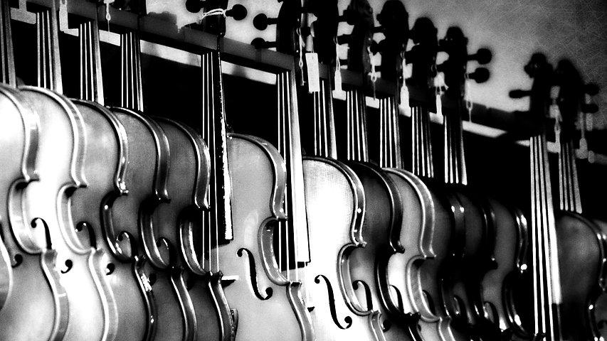 16924-shchipkovyye_strunnyye_instrumenty-strunnyj_instrument-muzykalnyye_instrumenty-basgitara-gitar