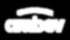 Logo_Ambev_branco.png