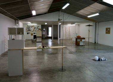 Survie, galerie Omnibus, Tarbes, France