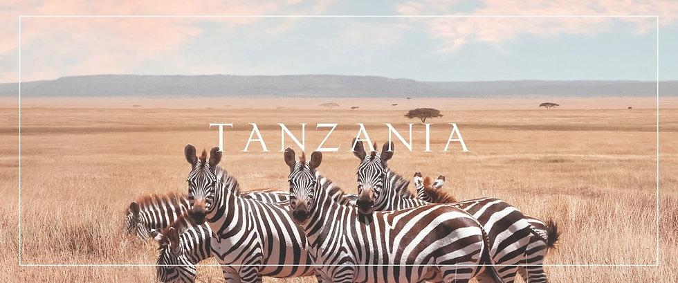 Copy of SOUTH AFRICA.jpg