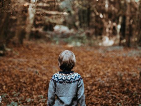 Vacances en famille - 6 escapades nature à découvrir cet automne