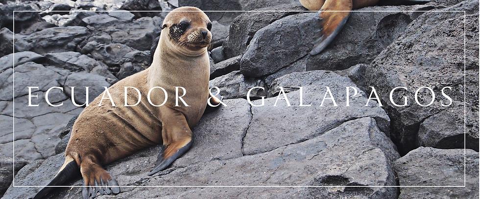 Ecuador et Galapagos.png