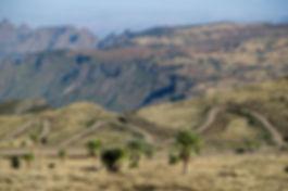 montagnes-du-simien.jpg