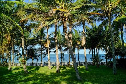 benguerra-island-mozambique.jpg
