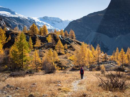 Alpes françaises : Les meilleures stations pour un été à la montagne