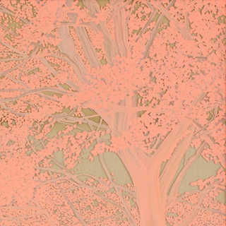 Nature vs Nature - Pink 1