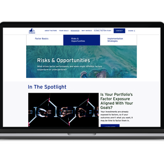 Risks & Opportunities Page