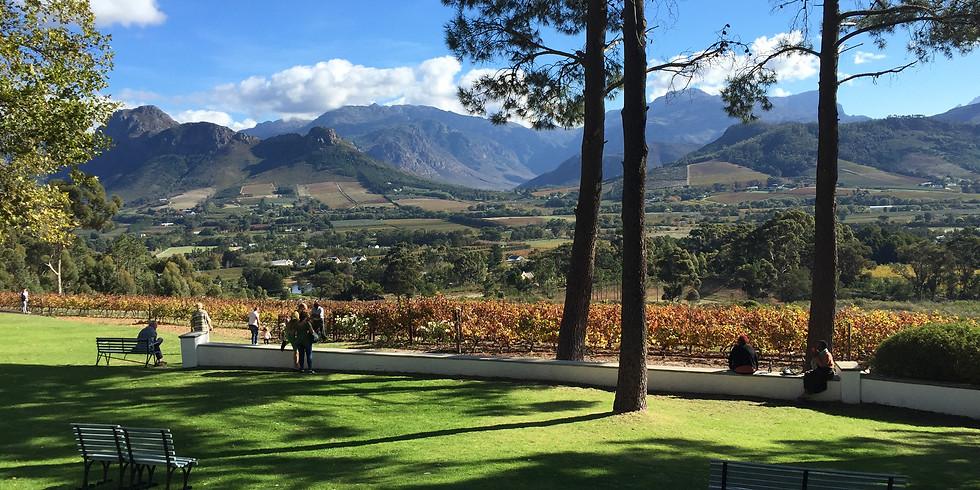 South Africa Wine and Safari Tour
