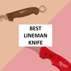 [2021] Milwaukee vs Klein Skinning Knife