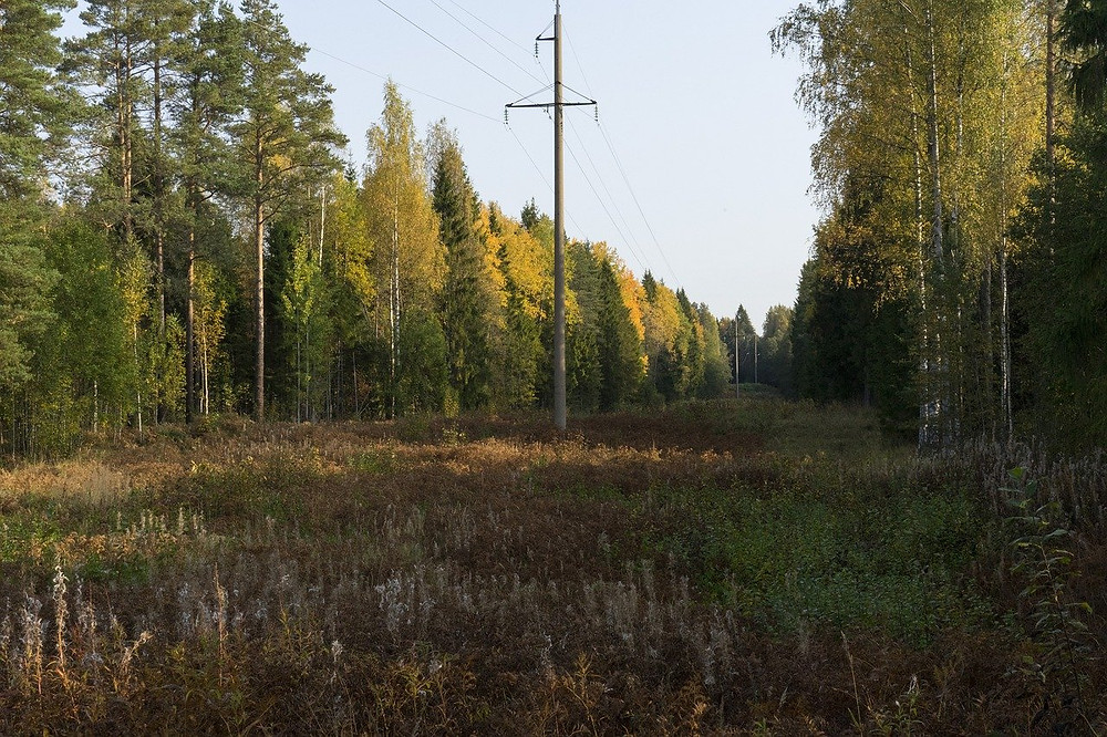 Rural Completed Powerline Project