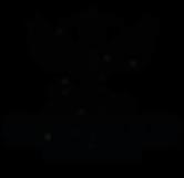 2020 logo web-01-01-01.png