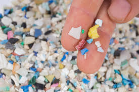 Microplastics, a small but VERY BIG deal, in us and in the oceans