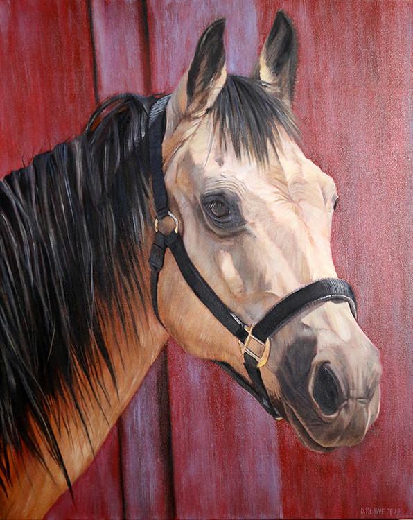 Jojo the Horse