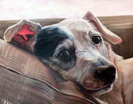 Dog Painting NY