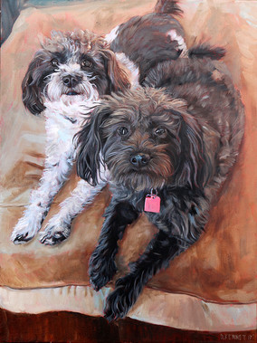 Dog Pet Artist | Denver