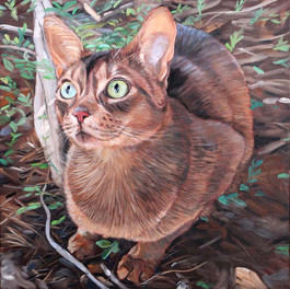 Cat Painting Seattle