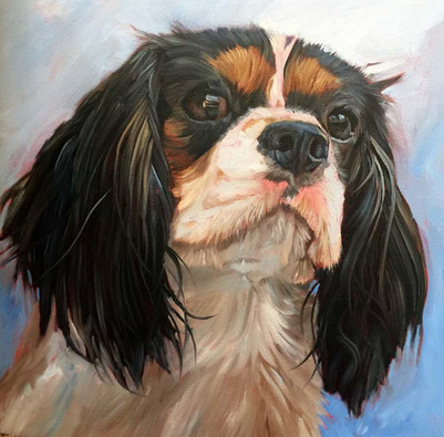 King Charles Pet Portrait