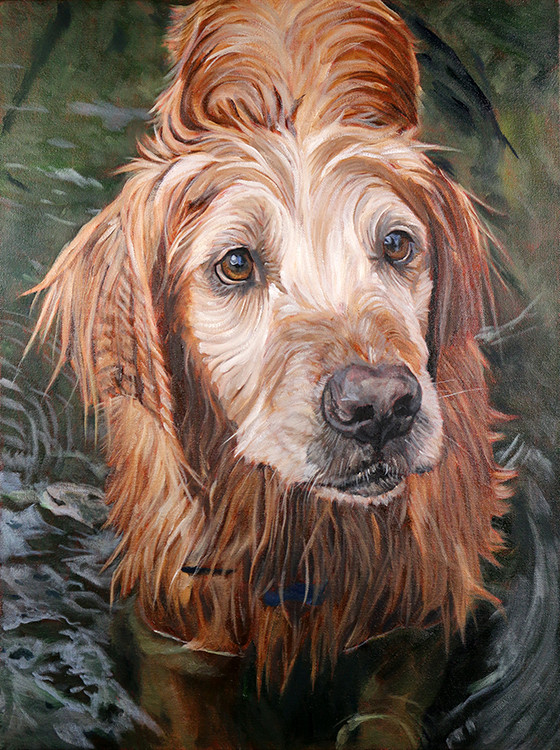 Painting of Golden Retriever in a river