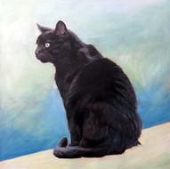 Cat Portrait   BFF Pet Painting