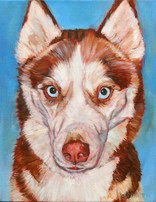 Dog Painting Miami