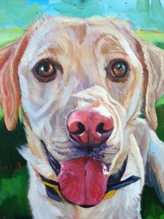 Custom Dog Painting