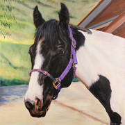 Horse Painting | BFF Pet Paintings