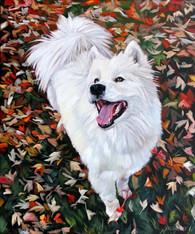 Dog Portrait | Bff Pet Painting