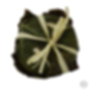 DSC01454 logo.jpg