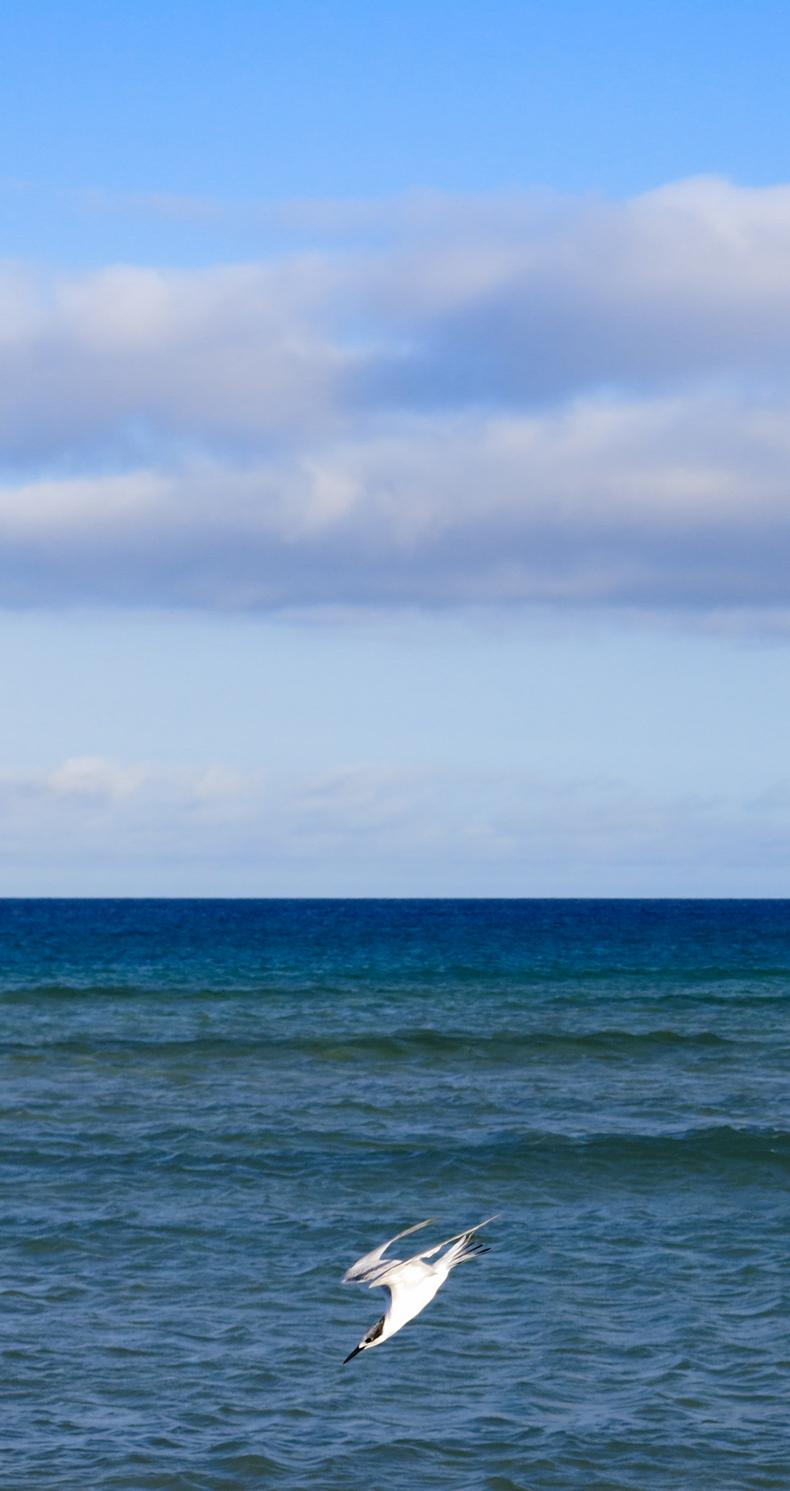 Sotavento,Jandia.  Fuerteventura