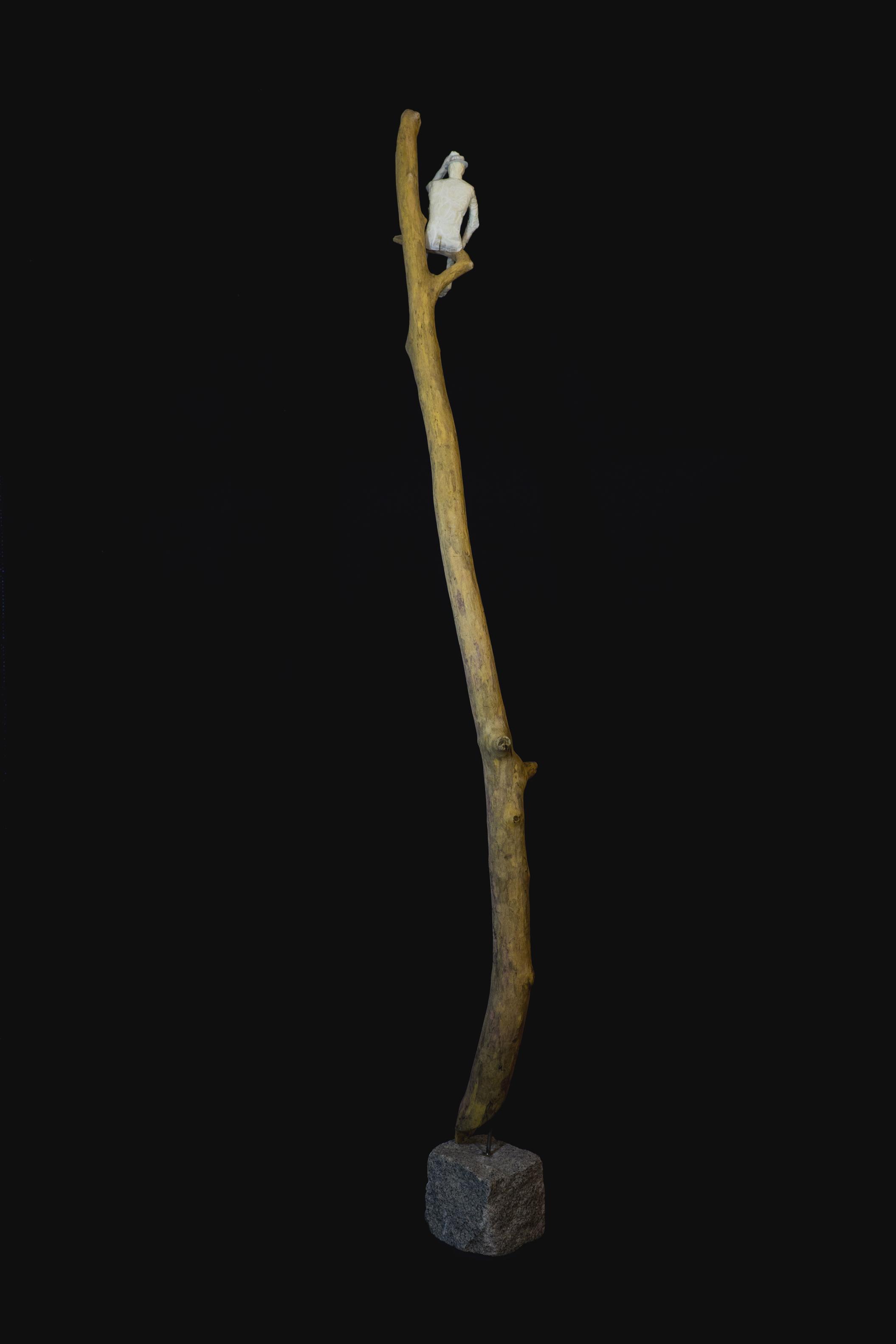 L'homme sur sa branche