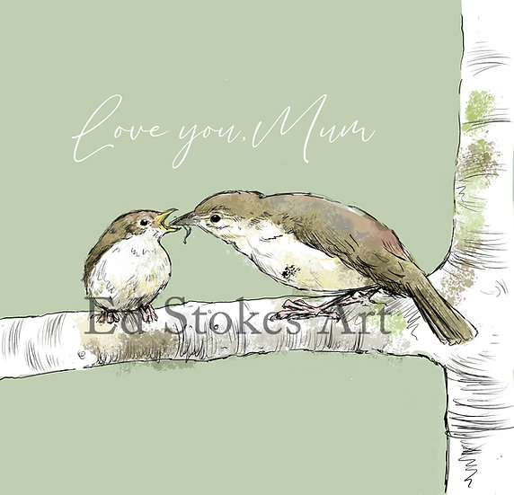 Willow Warblers Card