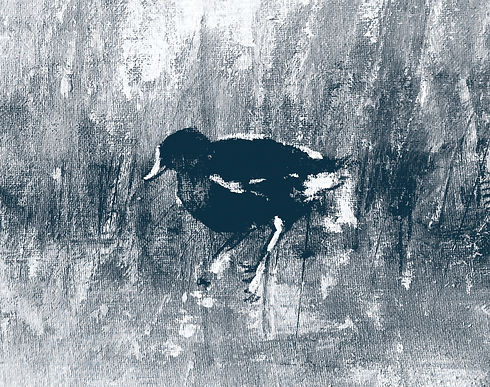 Moorhen on sackcloth for website.jpg