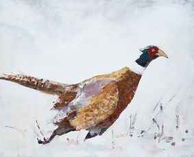 Wildlife_colour_pheasant_in_snow.jpg