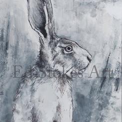 hare1_A5_definitive.jpg