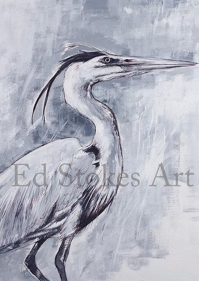 Grey Heron Print