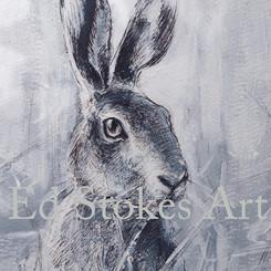 Hare 2 5x7_USE.jpg