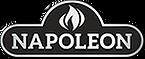 Logo-Napoleon-Shimmer.png