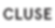 cluse-logo-groot.png